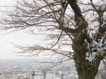 View-from-Montmartre-Paris